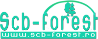 SCB-FOREST TEHNOLOGY SRL